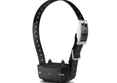 E-Collar Problem Solving