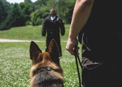 What Makes a Great K9 Handler?