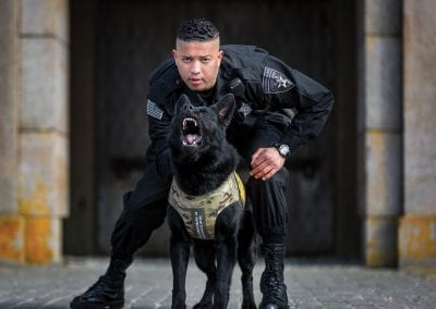 Protecting Man's Best Friend