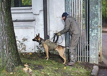 Tactical Manhunting