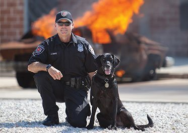 Accelerant Detection Canines